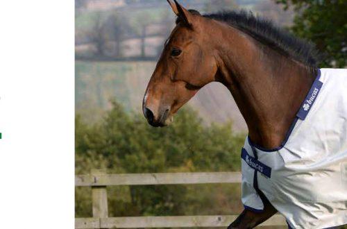 Couvertures pour chevaux Bucas