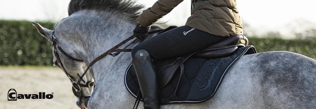 Cavallo Automne hiver 2020