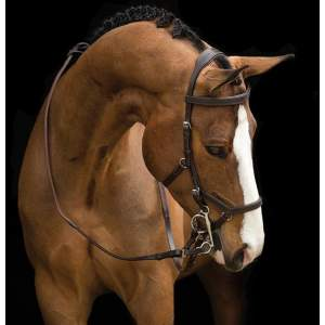 Micklem Rambo Comp Bridle in Havanna