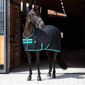 Amigo Stable Sheet X Sur Poly in Black/Teal
