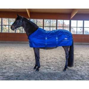 Akupressurdecke Accuhorsemat Original mit neuer Rückenfunktion in blau