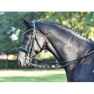 Kandare Luxury in schwarz/weiß/Strass-grau