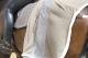 Thumbnail Abschwitzdecken: Abschwitzdecke Platinum Fleece -limited edition- in nude 130-02-24/023 von Eskadron