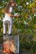 Thumbnail Turnierreithosen: Kinderreithose Micro Sport Teens in weiß 3188823 von ELT