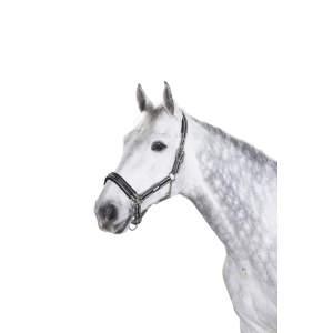 Halfter Pin Buckle in anthrazit-weiß-schwarz