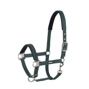 Halfter Pin Buckle in racinggreen