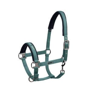 Halfter Dornschnalle Glossy (Classic Sports FS19) in seapine green