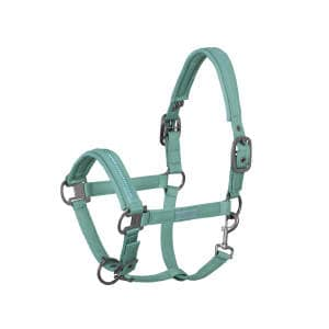 Halfter Doublepin Glossy Crystal (Classic Sports FS21) in balsamgreen