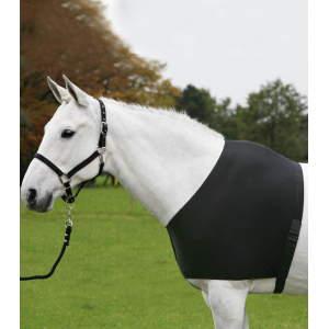Brustschutz Comfort Vest in schwarz