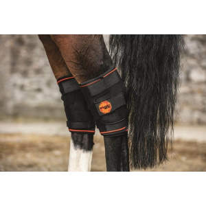 Rambo Ionic Hock Boot in Black/Black & Orange Stripe