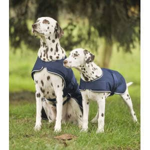 Regen-Hundedecke in marine