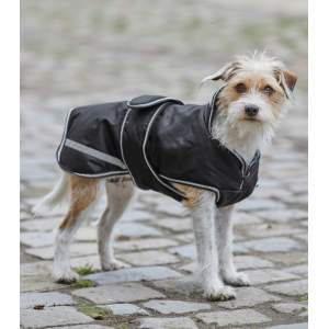Hundedecke Protection in schwarz