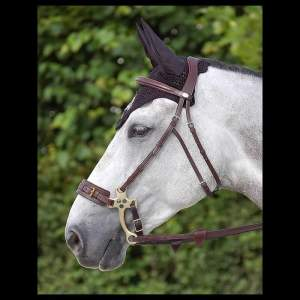 Hackamore-Zaum in black (NEC)