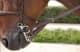 Thumbnail Zügel: Converter-Zügel 13mm breit in brown (NEC) b211co-brown von Dyon