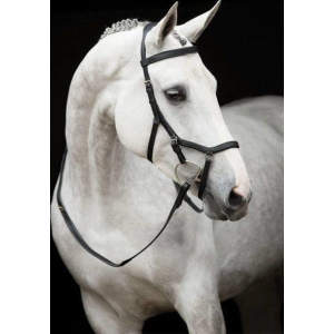 Rambo Micklem Comp Bridle in schwarz